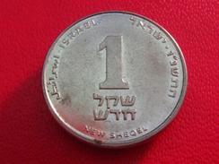 Israel - 1 New Shequel 8063 - Israel