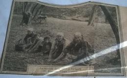 RACCOLTA DELLE OLIVE A VARIGOTTI  1930 RITAGLIO DI GIORNALE - Non Classificati