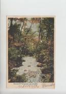 Malomviz Kolcz Postcard 1908 (ru302) - Rumänien