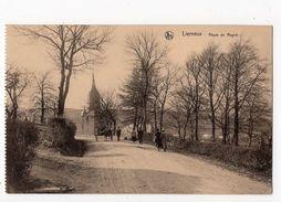 41 - LIERNEUX  - Route De Regné - Lierneux