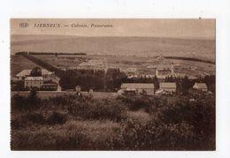 42 - LIERNEUX  - Colonie - Panorama - Lierneux