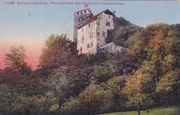 Schloss Habsburg - Stammschloss Des Oesterreich. Kaiserhauses (5220) - AG Aargau