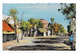 COLOMB BECHAR  -  Avenue R. Poincaré -  - L 1 - Bechar (Colomb Béchar)