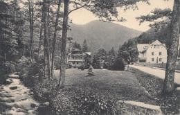 JAUERNIG (Böhmen, Heute Tschechien) - Krebsgrundtal, Gel.1918?, Postablage? Österr.Frankierung, Stempel Weissbach - Böhmen Und Mähren