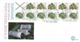 Surinam Suriname 1979 Paramaribo Papaya Zuurzak Fruit Stamp Booklet FDC Cover - Suriname