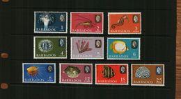 BARBADOS - QEII - 1965 - MARINE LIFE - 10 Stamps - MNH - Barbados (1966-...)