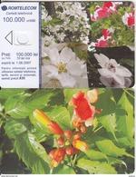 ROMANIA - Flowers, Exp.date 01/06/07, Dummy Telecard(no Chip, No CN) - Romania