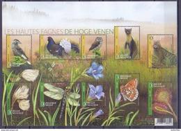Belgie - 2017 - OBP - ** Fauna & Flora - De Hoge Venen - A Buzin Marijke Meersman ** - Belgique