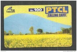 USED PHONECARD PAKISTAN PTCL RS 100 - Pakistan