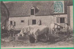 28 - En Beauce - Rentrée à La Ferme - Editeur: ND Phot N°276 - France