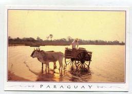 PARAGUAY - AK 310942 Lago Ypacatai - Ciudad De Aregua - Paraguay