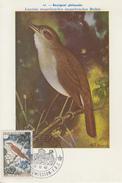 Carte  Maximum  1er  Jour   MONACO    Rossignol   1962 - Pájaros Cantores (Passeri)