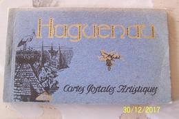Carnet De 12 Cpa - HAGUENEAU - Haguenau