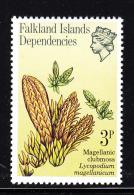 Falkland Islands Dependencies 1981 MNH Scott #1L53 3p Magellanic Clubmoss - Falkland