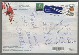 C2758 EIRE IRELAND Postal History 1998 ANIMAL BIRD (m) - 1949-... Repubblica D'Irlanda