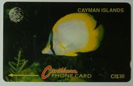 CAYMAN ISLANDS - GPT - CAY-5B - Spotfin Butterfly Fish - 5CCIB - $30 - Used - Cayman Islands