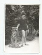 Boy Shooting A Tiger In The Park T75-22 - Personnes Anonymes