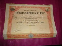 DERIVES CHIMIQUES DU BOIS (1923) Bordeaux , Gironde - Actions & Titres