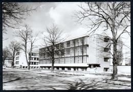 B0174 - Dessau - Bauhaus - Blume - Dessau