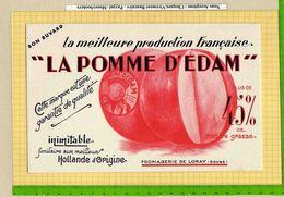 BUVARD : La Pomme D'EDAM  Hollande D'Origine FROMAGERIE De LORAY  Doubs - Dairy