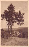 ALTE  AK  REICHENBERG / Böhmen  - Blick Zum Volksgarten -  1939 Gelaufen - Boehmen Und Maehren