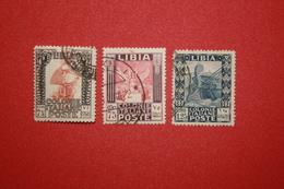LIBIA  - PITTORICA D. 14  - SERIE  - 1931.-  USATO - Libya