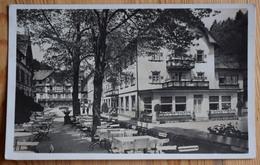 Bad Rippoldsau - Terrasse De Café Ou Restaurant - (n°9606) - Bad Rippoldsau - Schapbach