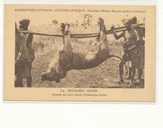 FL) EXPEDITION CITROEN, CENTRE AFRIQUE, 2ème Mission Haart Audoin Dubreuil // CHASSE AU LION DANS L OUBANGUI CHARI / - Central African Republic