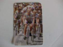 Cycling/Cyclisme Ciclismo Paulo Couto Portuguese Pocket Calendar 1993 - Tamaño Pequeño : 1991-00