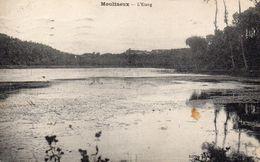 CPA MOULINEUX - L'ETANG - France