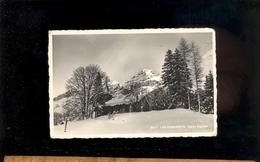 LES DIABLERETS Vaud : L'église Anglaise English Church  1952 - VD Vaud