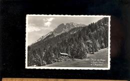 GRYON  Vaud : Le Chalet Des Belges Et L' Argentine   1960 - VD Vaud