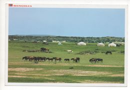 SUKHBAATAR PROVINCE - Mongolie