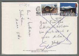 C2790 SLOVENIA Postal History 1998 ANIMAL WWF TURTLE (m) - Slovenia