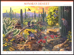 USA STAMPS, FULL SHEET OF 10 SELF-ADHESIVE, SONORAN DESERT, FAUNA & FLORA, MNH - Sheets