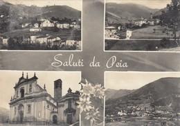 11385-SALUTI DA PEIA(BERGAMO)-FG - Souvenir De...