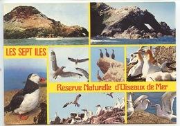 Les Sept Iles Réserve Naturelle D'oiseaux De Mer Multivues N°2423 Cp Vierge Macareux Bassan Guillemot Petrel Cormoran Go - Oiseaux