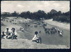 RA508 MAHADDEI - UEBI SCEBELI - Somalia