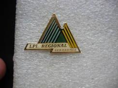 Pin's Du Lycée LPI Régional De GERARDMER - Administrations