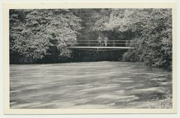 AK  Aach Aachquelle Quelle  Mit Brücke 1953 - Unclassified