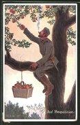 Künstler-AK H.S.B.: Auf Requisition, Soldat Schneidet Äpfel Vom Baum - Künstlerkarten