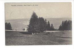 18931 -  Paysage Jurassien Mont Soleil St.Imier - JU Jura