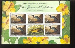 MALDIVES   1195 ; MINT NEVER HINGED SOUVENIR SHEET OF BIRDS   ;  AUDUBON - Vögel
