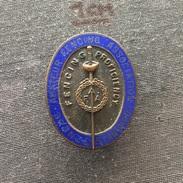 Badge (Pin) ZN006154 - Fencing (Fechten / Macevanje) Proficiency Amateur Association Bronze Standard - Fencing