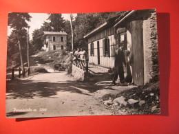 CARTOLINA  PARASCIOLO      ANIMATA   - D 2437 - Sondrio