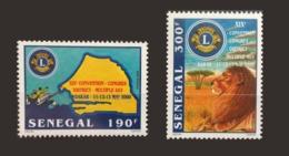 SENEGAL 2000 LIONS CLUB FELINS LION - RARE -  MNH ** - Senegal (1960-...)