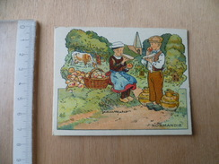 CHROMO PHOSPHATINE FALIERES REGION DE FRANCE  NORMANDIE  VACHE POMME - Trade Cards
