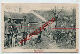 CHIENS Secouristes-Croix Rouge-NON SITUEE-CARTE Imprimee Allemande-Guerre 14-18-1 WK-Militaria-Feldpost - War 1914-18