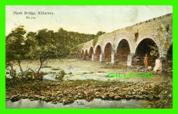 KILLARNEY, IRLANDE - FLESK BRIDGE - ANIMATED - WRITTEN - - Kerry
