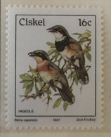 Ciskei - MNH** - 1987 - #  114 - Ciskei